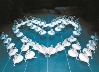 万博体育manbet网页芭蕾舞剧《白毛女》《闪闪的红星》开启巡演献礼新中国成立70周年